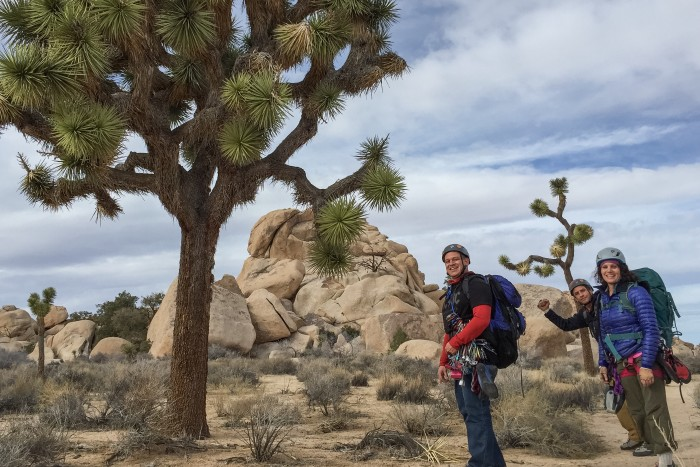Rock climbing classes joshua tree, ca