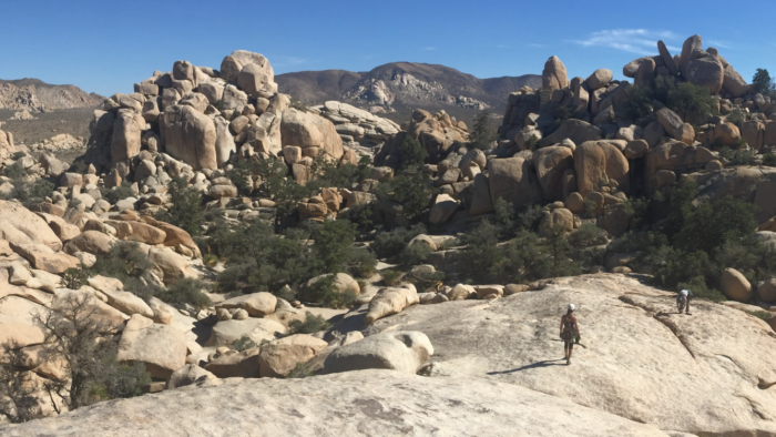 walk off, the sentinel, sentinel, joshua tree, national park, climbing, rock climbing