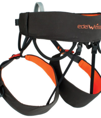 EDELWEISS-DART-HARNESS-BACK